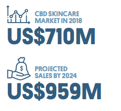 Chart 16: CBD Beauty – The Next Big Thing Source: Intro-Blue, The Fresh Toast, Prohibition Partners