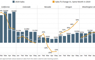Chart 2: Adult-Use Cannabis Sales by Month & Market in 2020: Percent Change vs. Same Month in 2019 Source: Intro-Blue, Marijuana Business Daily, Headset