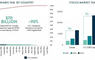 Chart 12: Canopy Bets on German Growth Source: Intro-Blue, New Frontier Data