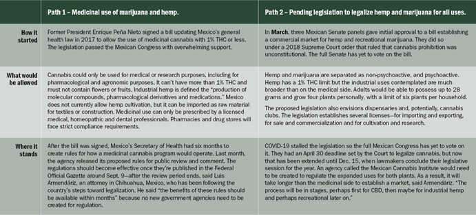 Chart 16: How Mexico's Two Different Legalization Paths Compare  Source: Intro-Blue, Marijuana Business Daily