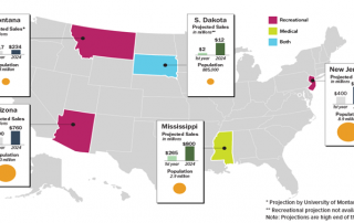 Chart 3: States with Legalization on the Ballot Source: Intro-Blue, Marijuana Business Daily